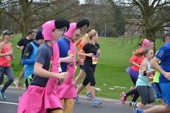 Läs- halv maraton 2017 - 19th mars 2017 Arkivfoton