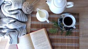Läsa över en kopp av varmt te royaltyfria foton
