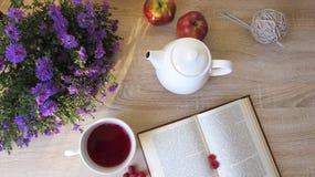 Läsa över en kopp te med hallon arkivfoto