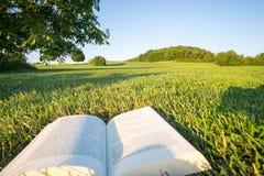 Läsa en bok i en parkera i naturen som punkt-av-sikt-skjutas i Bayern Tyskland Royaltyfri Bild