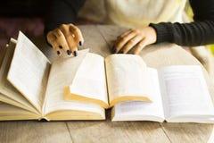 Läsa för flicka böcker royaltyfri fotografi