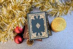 Läsa för jul Royaltyfria Foton