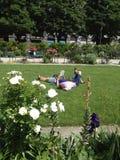 Läsande ligga för folk på gräset Royaltyfri Fotografi