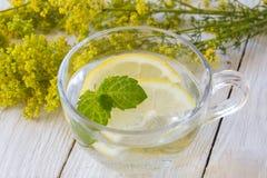 Läsk med citronen Arkivfoto