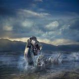 Läskig fjord Ness Monster som dyker upp från vatten Royaltyfri Bild