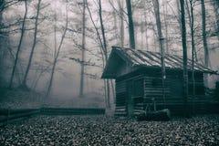 Läskig koja i Misty Forest Arkivfoto