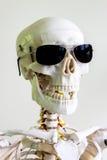Läskig skalle för solglasögon Royaltyfria Bilder