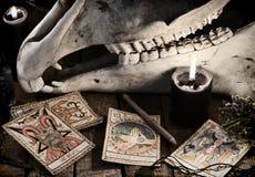 Läskig skalle med tarokkorten, örterna, blyertspennan och svartstearinljusen Royaltyfri Foto