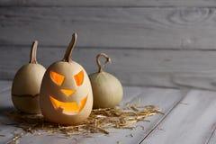 Läskiga halloween pumpor i gammal ladugård Arkivfoto