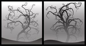 läskiga trees Arkivbild