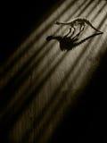 Läskigt dinosaurieskelett i mörkt rum arkivbild
