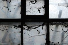 läskigt fönster Royaltyfri Foto