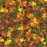 Lässt Herbst Lizenzfreies Stockbild