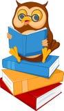 Läste den kloka ugglan för den gulliga tecknade filmen en bok stock illustrationer