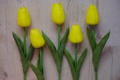 lätt bakgrund redigerar blommavektorn Royaltyfri Foto