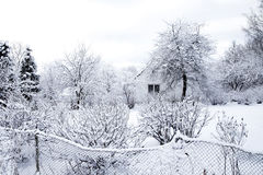 lätt redigera bilden till treesvektorvintern Arkivbilder