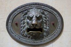 Låg lättnad för Lion Royaltyfri Fotografi