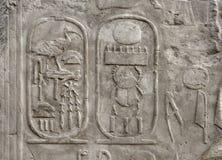 Lättnad på den Luxor templet i Egypten Arkivbilder