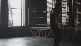 Lättvikts- boxareutbildning i tappning stiliserade idrottshall nära cirkeln lager videofilmer
