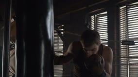 Lättvikts- boxareutbildning som stansar påsen i idrottshallultrarapiden stock video