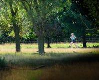 läufer lizenzfreie stockfotografie