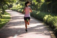 Läufer, der auf dem Morgenparkstraßen-Trainingsrütteln läuft Stockfotografie