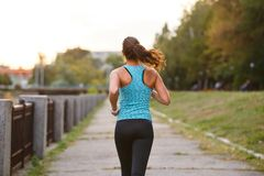 Läufer der jungen Frau, der morgens im Park rüttelt Lizenzfreie Stockfotos