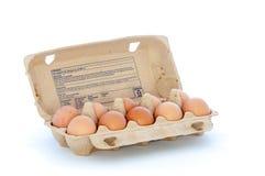Låda som fylls med tio ägg Royaltyfria Foton