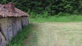 Låg antenn bredvid gammalt och övergett hus i skogen arkivfilmer
