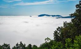 Låg liggande dimma i Shenandoahet Valley arkivfoton