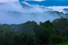 Låg nivåmoln bland den Chiang Dao dalen, Thailand Royaltyfri Bild