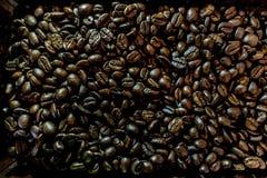 Låg nyckel- bild: Mörk themetic bakgrund för kaffebönor Royaltyfri Fotografi