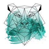 Låg poly björn på blå vattenfärg Royaltyfri Fotografi