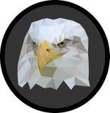 Låg-Poly Eagle Arkivbilder