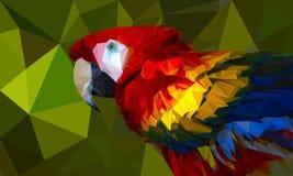 Låg-poly färgrik papegoja Royaltyfria Foton