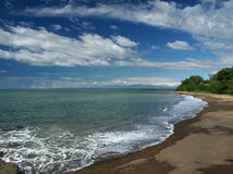 låg tide för strand Royaltyfria Bilder