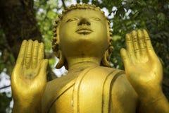 Låg vinkel guld- buddha Royaltyfri Bild