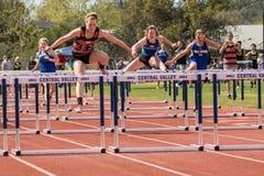 Låga häckar på friidrottstävlingen arkivfoto