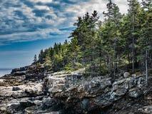 Låga klippor av det stora huvudet, Acadianationalpark Royaltyfri Fotografi