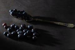 Låga nyckel- blåbär på en tappningsked arkivfoto