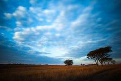 Låga och snabba moln Fotografering för Bildbyråer