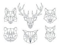 Låga poly djurhuvud Triangulär tunn linje vektoruppsättning Royaltyfri Bild