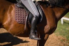 Lågt avsnitt av den kvinnliga jockeyhästryggridningen royaltyfri bild