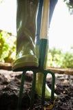 Lågt avsnitt för närbild av kvinnaanseendet med att arbeta i trädgården gaffeln på smuts arkivbild