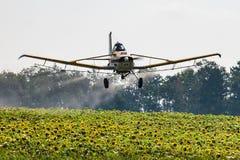 Lågt flygflygplan som besprutar ett fält av solrosor royaltyfri fotografi