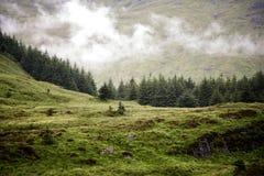 Lågt moln i Skotska högländerna royaltyfri bild