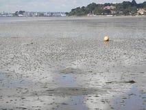 Lågvatten i den Poole hamnen, Dorset Royaltyfri Fotografi