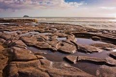 Lågvatten på den Muriwai stranden nära Auckland, Nya Zeeland Royaltyfria Bilder