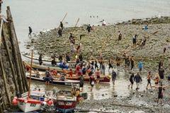 Lågvatten på hamnen, Clovelly, Devon Royaltyfria Bilder