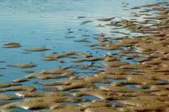 Lågvatten på stranden Arkivfoton
